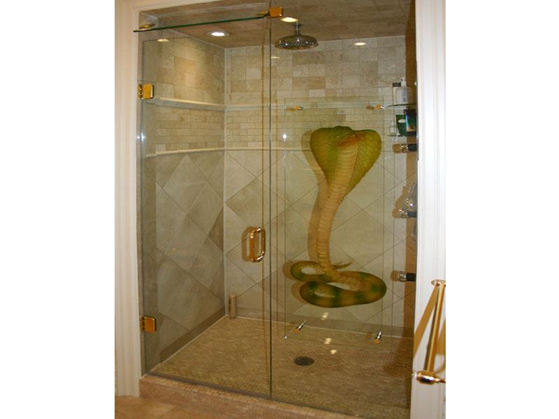 Decorative Bathroom Doors : Decorative glass shower door shd cbd
